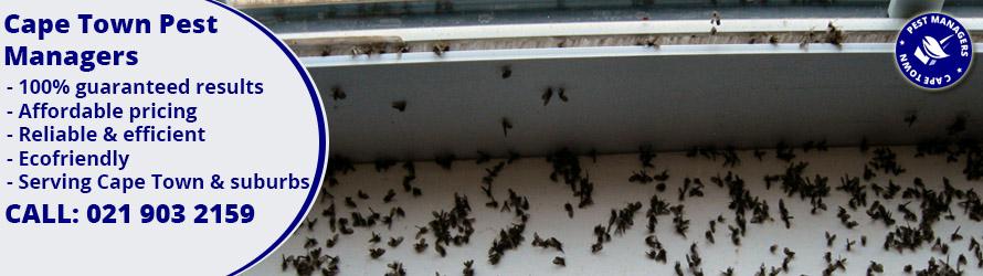 pest control stellenbosch